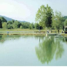 Lago sant 39 antonio for Lago padova